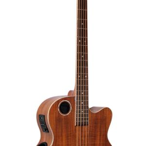 EBR6-N5 Acoustic-Electric Bass Guitar, Koa 5-string