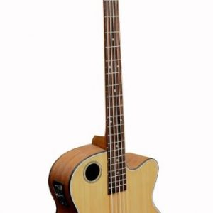 EBR3-N5 Acoustic-Electric 5-string Bass Guitar