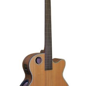 EBR3-N5F Acoustic-Electric Bass Guitar, 5-string Fretless
