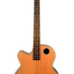 EBR3-N4LF Acoustic-Electric Bass Guitar, Fretless Lefty
