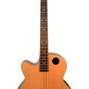 EBR3-N4L Acoustic-Electric Bass Guitar, Lefty