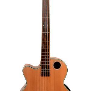 EBR3-N5L Acoustic-Electric Bass Guitar, Lefty