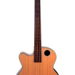 EBR3-N5LF Acoustic-Electric Bass Guitar, Lefty Fretless