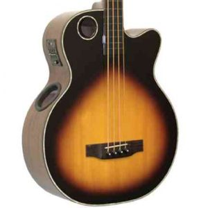 EBR1-TB5FE Acoustic-Electric Bass, 5-string Fretless Ebony