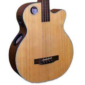 EBR3-N4F Acoustic-Electric Bass, Fretless