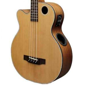 EBR3-N4L Acoustic-Electric Bass Guitar, Lefty