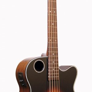 EBR1-TB5 Acoustic-Electric Bass